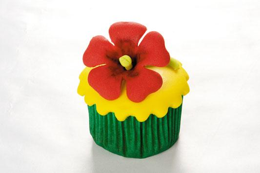 cupcake-havai_exp05_07.01.11.jpg