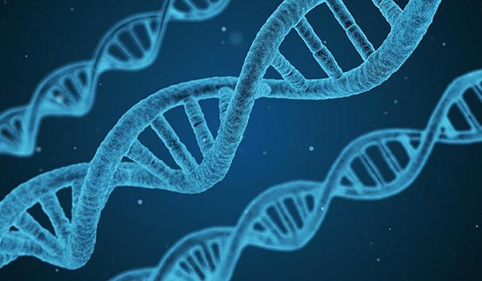 Teorías del origen de la vida - 5
