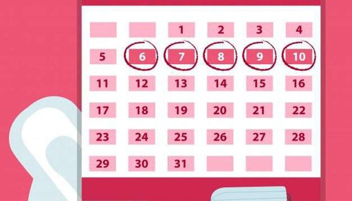 La menstruación - 4