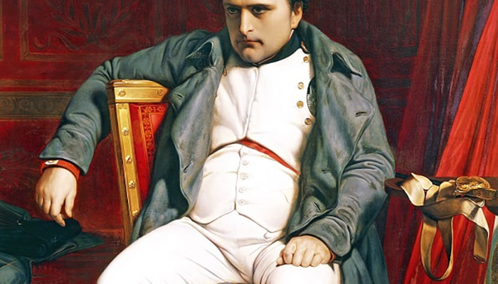 ¿Quién fue: Napoleón Bonaparte? - 1