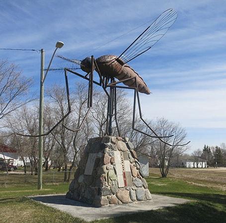 9 cosas que quizás no sabías de los mosquitos - 1