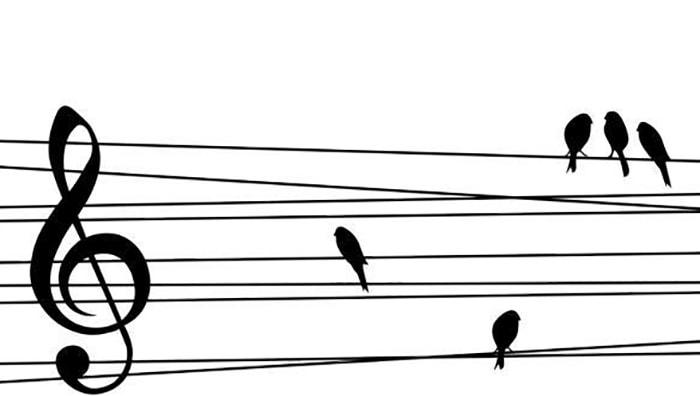 A los animales, ¿les gusta la música? - 1