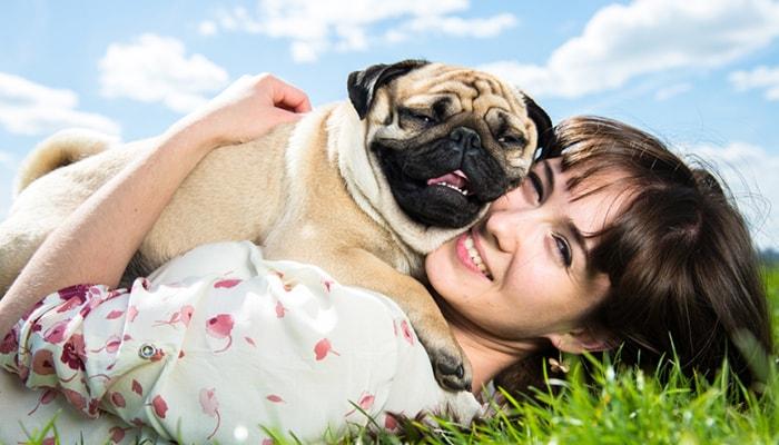 ¿Por qué los perros son tan fieles? - 2