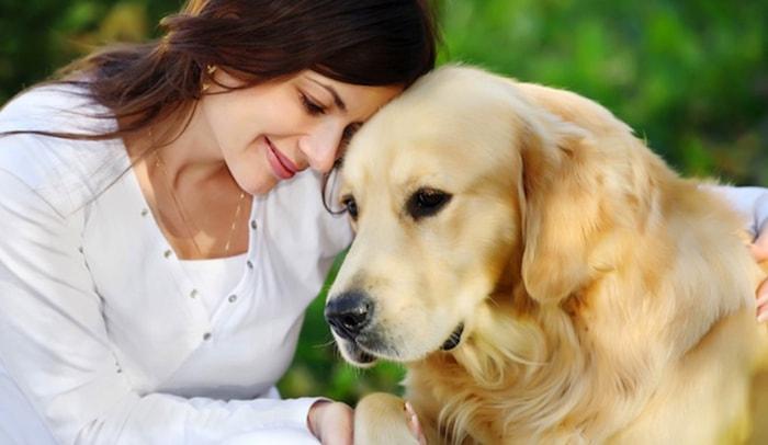 ¿Por qué los perros son tan fieles? - 3