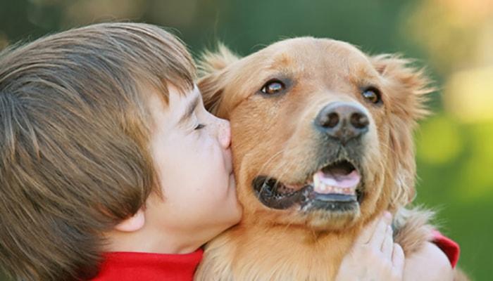 ¿Por qué los perros son tan fieles? - 4