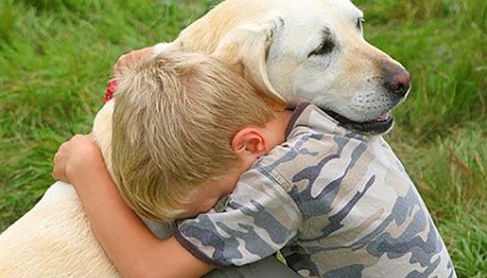 ¿Por qué los perros son tan fieles? - 5