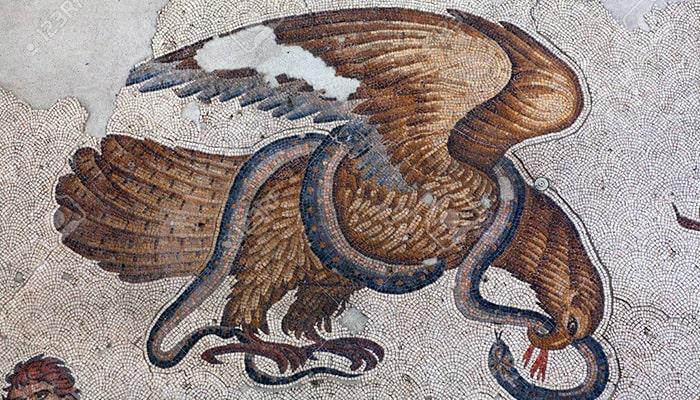 Águila: El señor del cielo - 6
