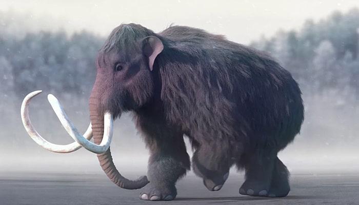 Animales extintos que podrían volver a la vida gracias a la ciencia - 5