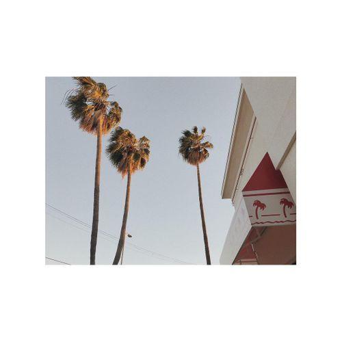 LA|映象 图3