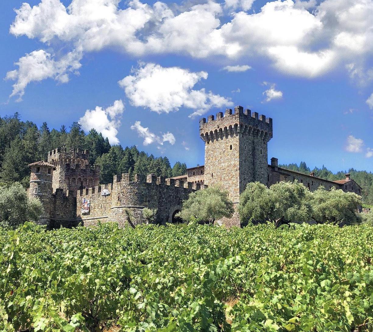 在意大利古堡里酿酒 图3