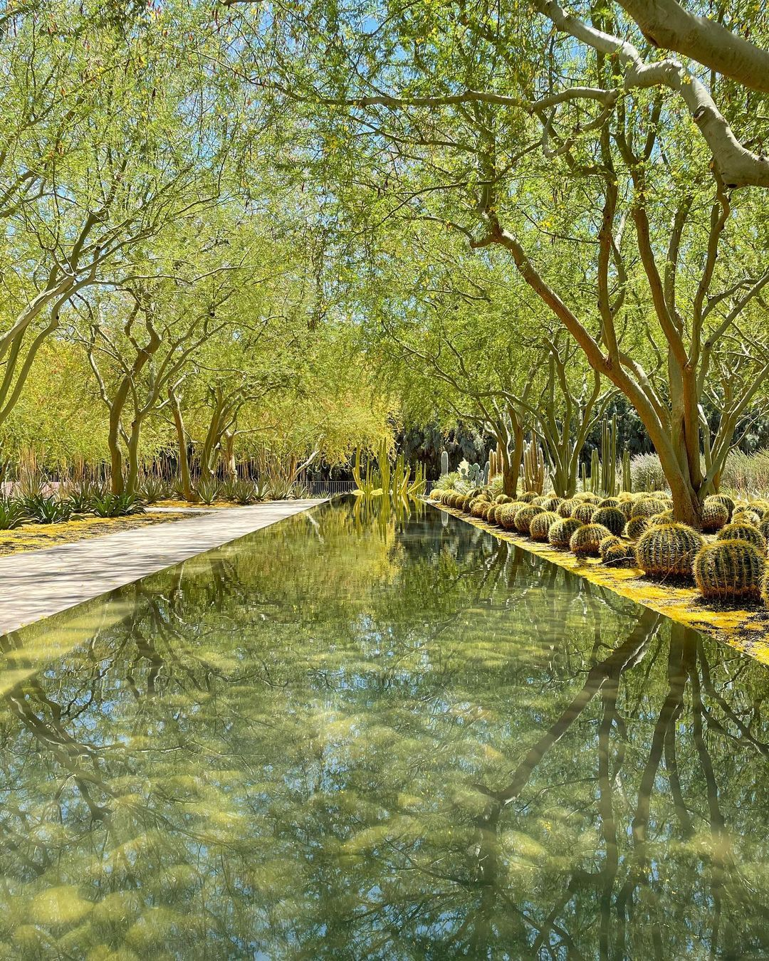 洛杉矶超美绿植园,打卡圣地 图1