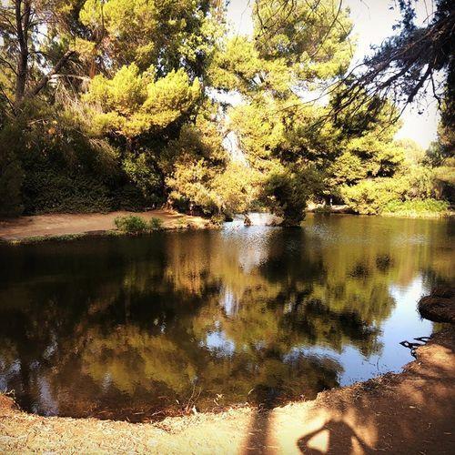 洛杉矶旅游| Debs Park | 市区爬山好去处 图3