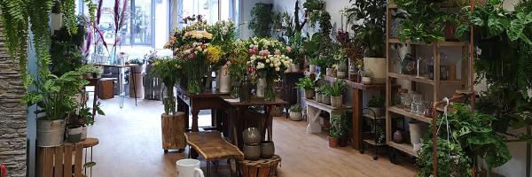 Lilas Pampa : Marine et Nora vous propose des fleurs de saison afin d'embellir votre maison et d'émerveiller votre quotidien. Grâce à leurs passion, vous pourrez toujours trouver un bouquet à votre go ...