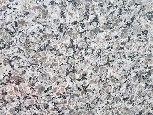 New Caledonia Granite Level 1 available at East Coast Granite of Charlotte