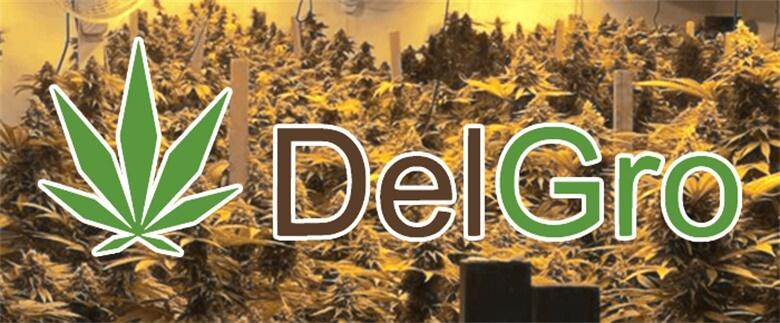 grow-op-overview-delgro-excerpt