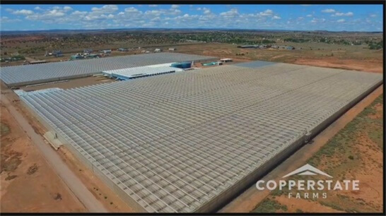 qa-with-fife-symington-iv-of-copperstate-farms-in-