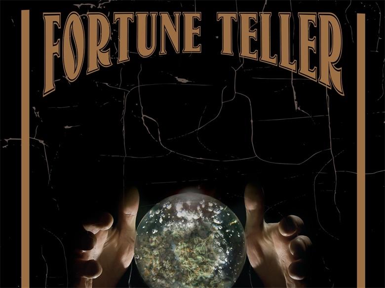 fortune-tellers