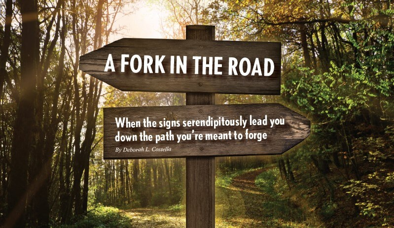 a-fork-in-the-road