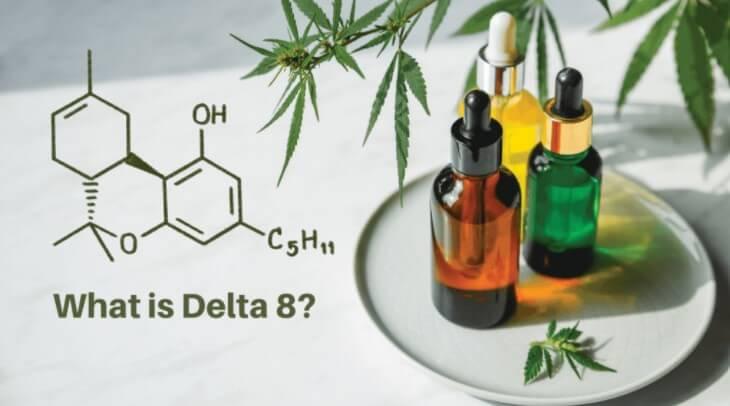 cannabinoid-spotlight-delta8-thc