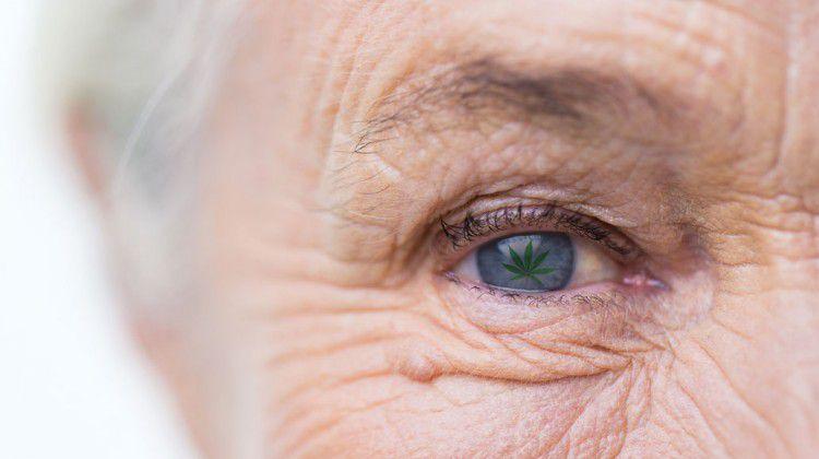 an-elixir-for-the-elderly