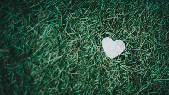 How your love language affects your leadership style