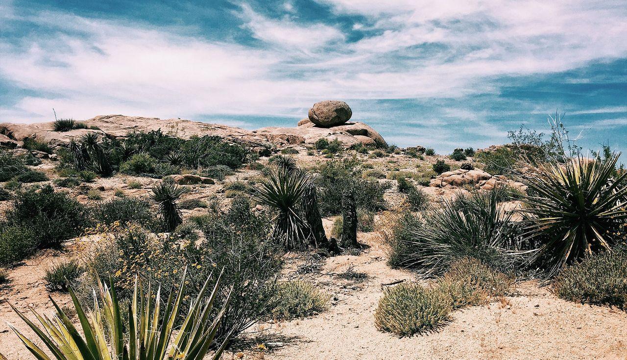 Kingman-Arizona