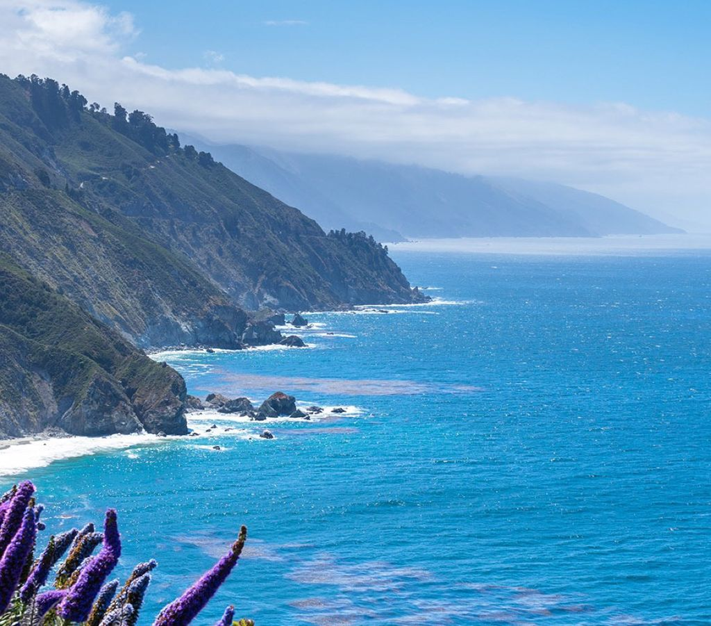 Monarch Bay-California