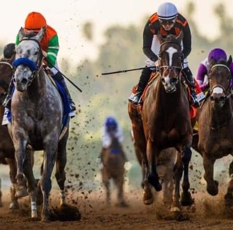 Saturday Horse Racing!!  Place your Bets!!