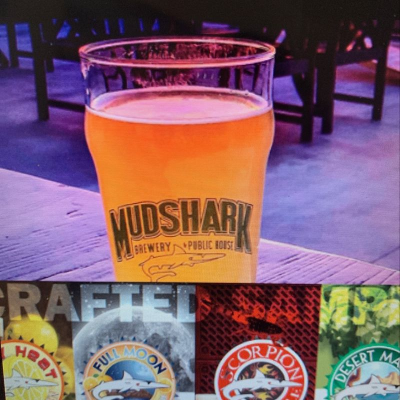 Mudshark Brewery and Public Housel