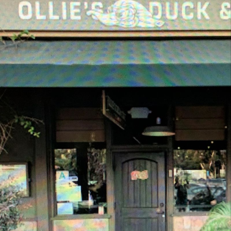 Ollie's Duck & Dive
