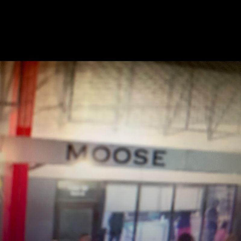 MOOSE LOUNGE