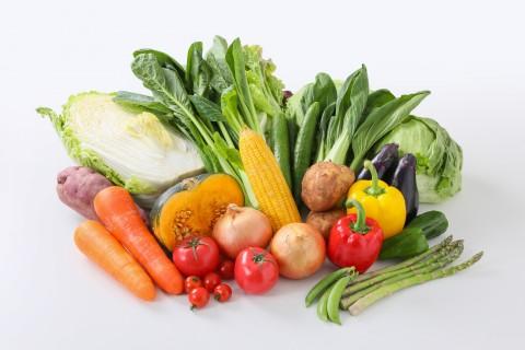 食品/農作物