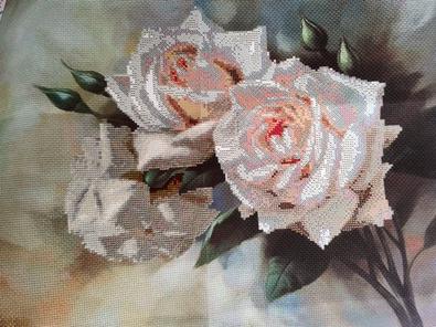 Róże z Chin
