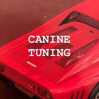 CANING TUNING