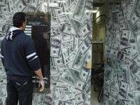 الدولار يرتفع إلى 18.69 جنيه للشراء في التعاملات الرسمية