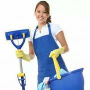 Servicios Domésticos.