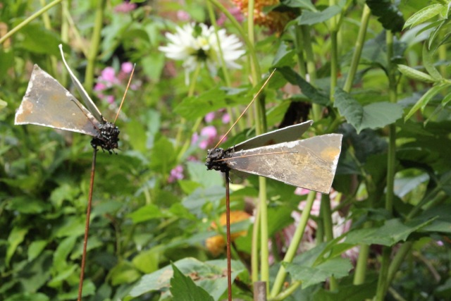 Beeld vlinders