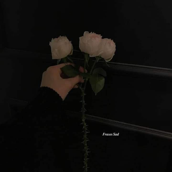 Y aunque la vida no me quiera con vida, vivire solo por ti♥
