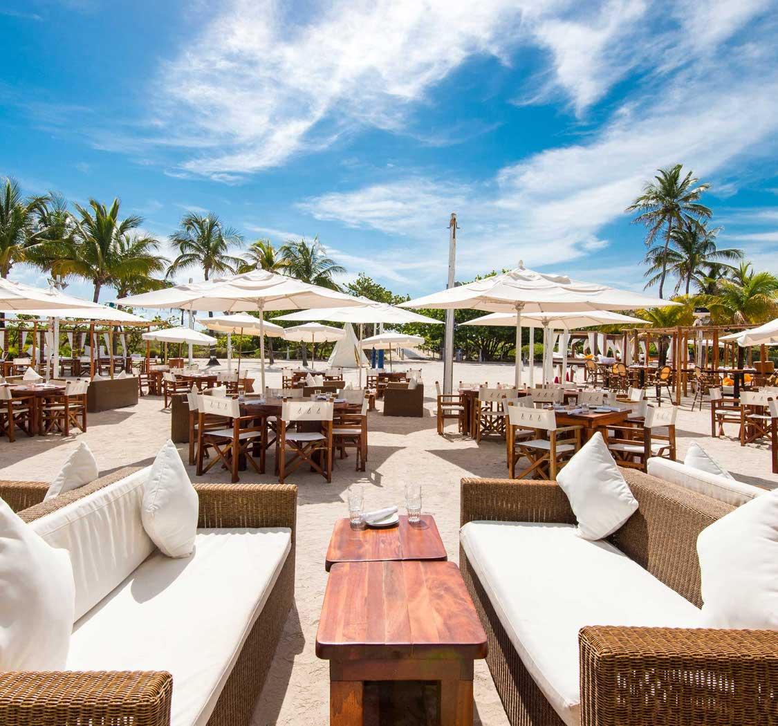 Ultimate Miami Beach Bars