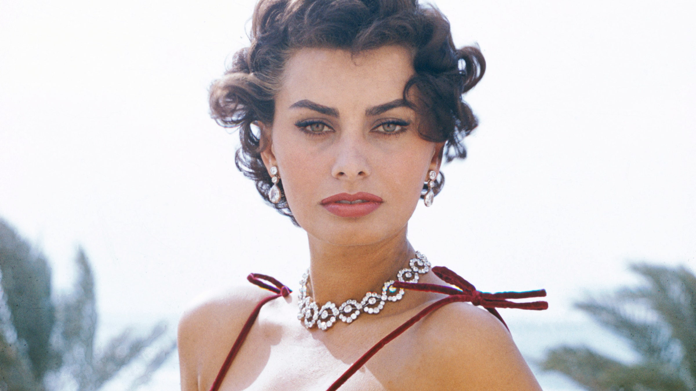 The Complete Collection of Sophia Loren Movies