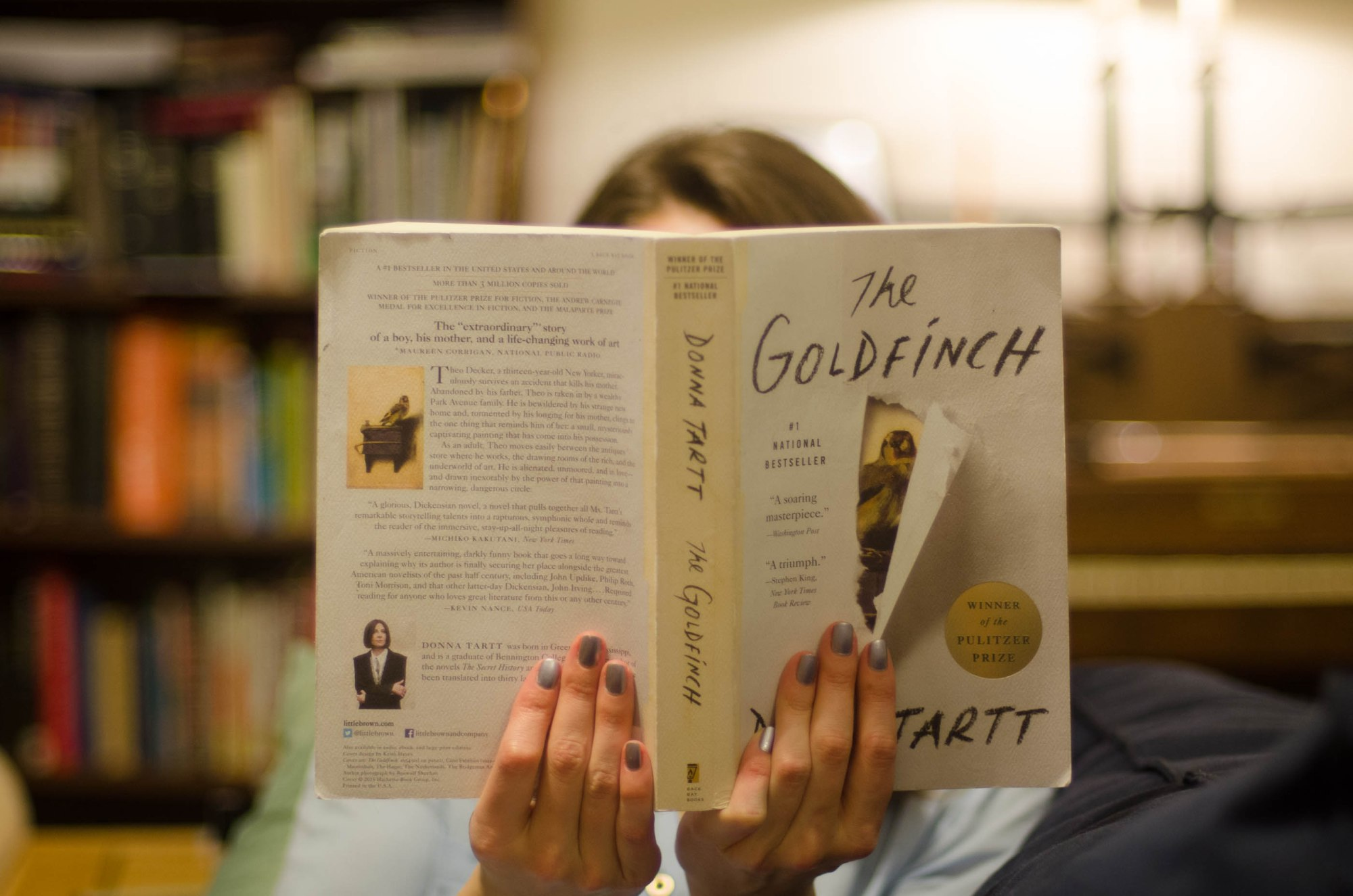 8 Arresting Books Like The Goldfinch