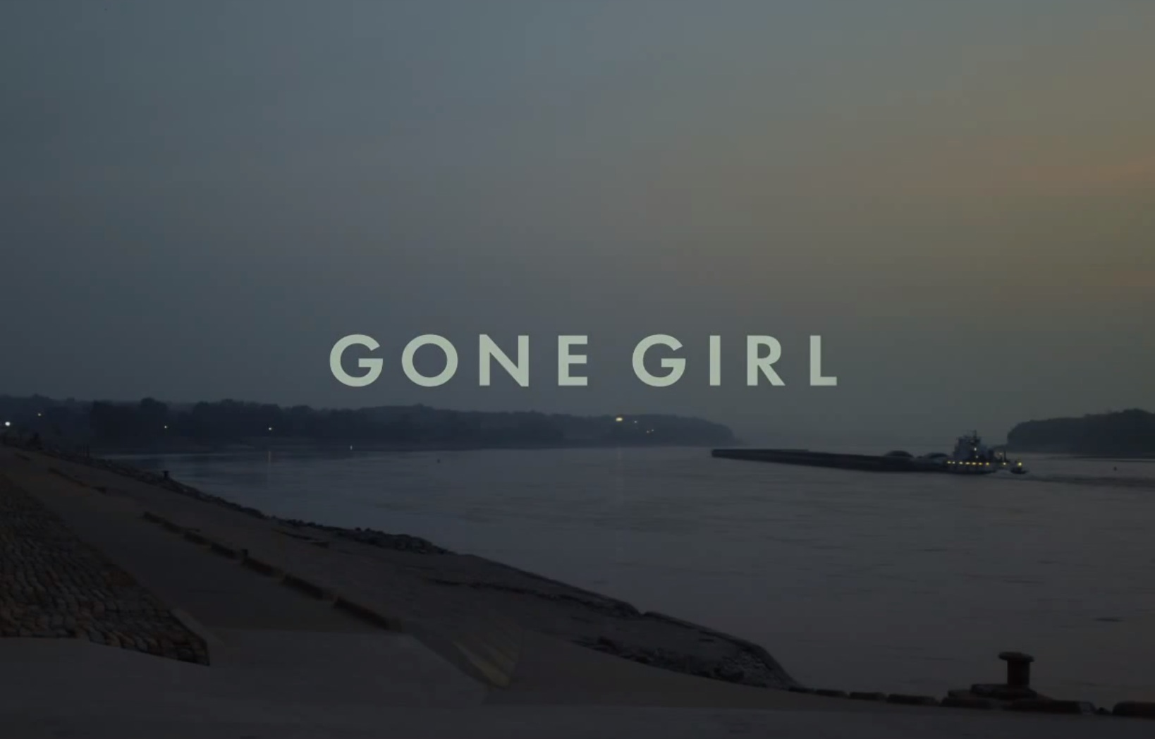 9 Books that are the next Gone Girl