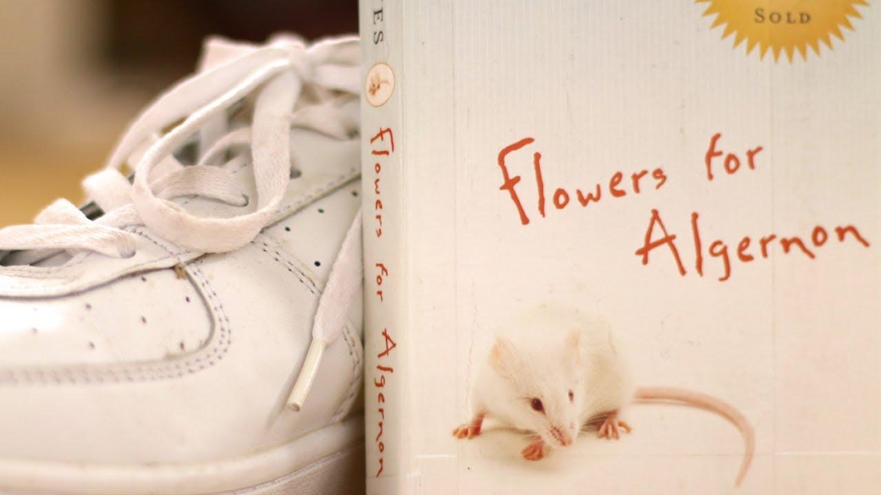 9 Emotive Books Like Flowers For Algernon