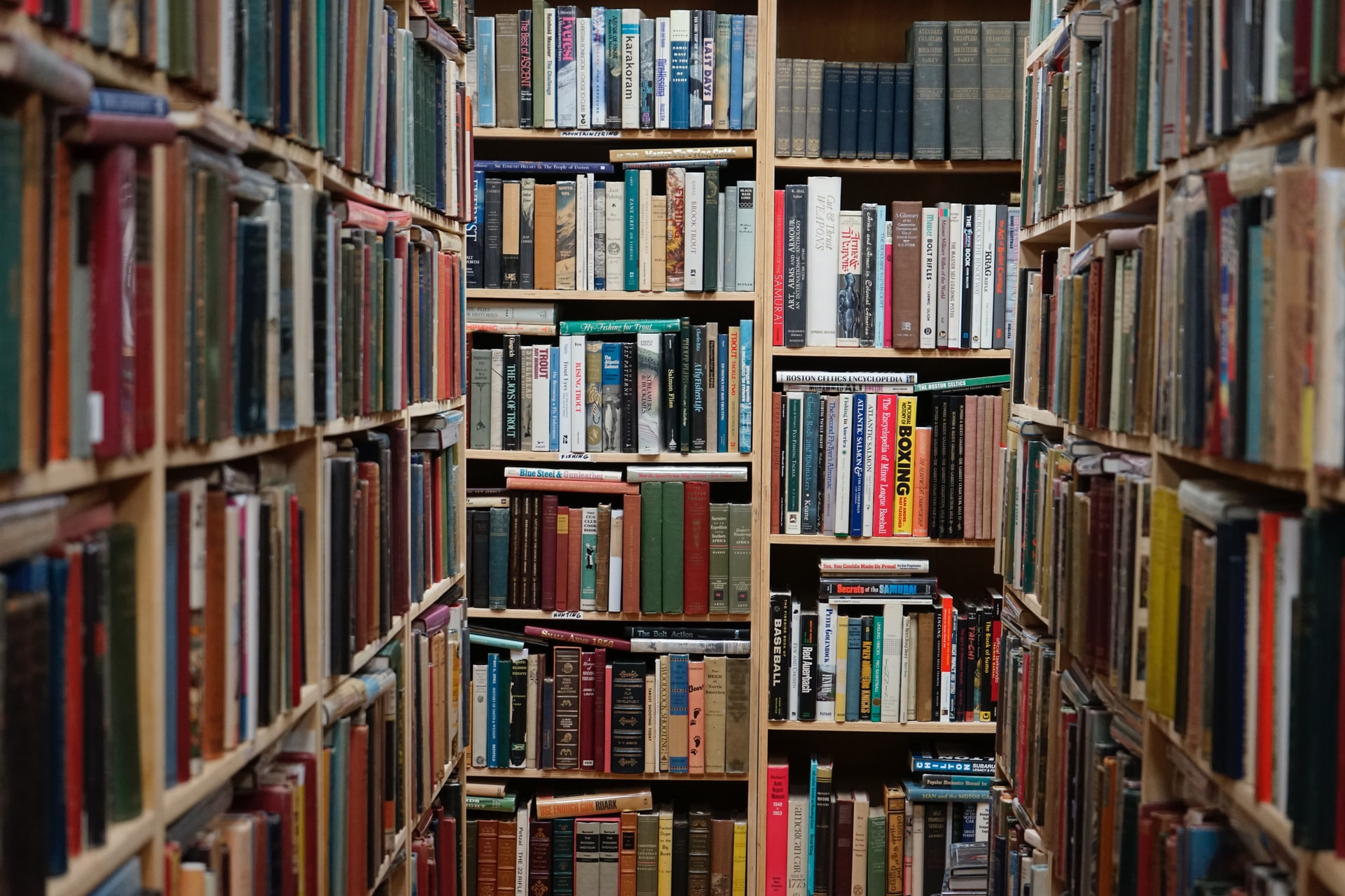 Project Gutenberg Top 100 Books