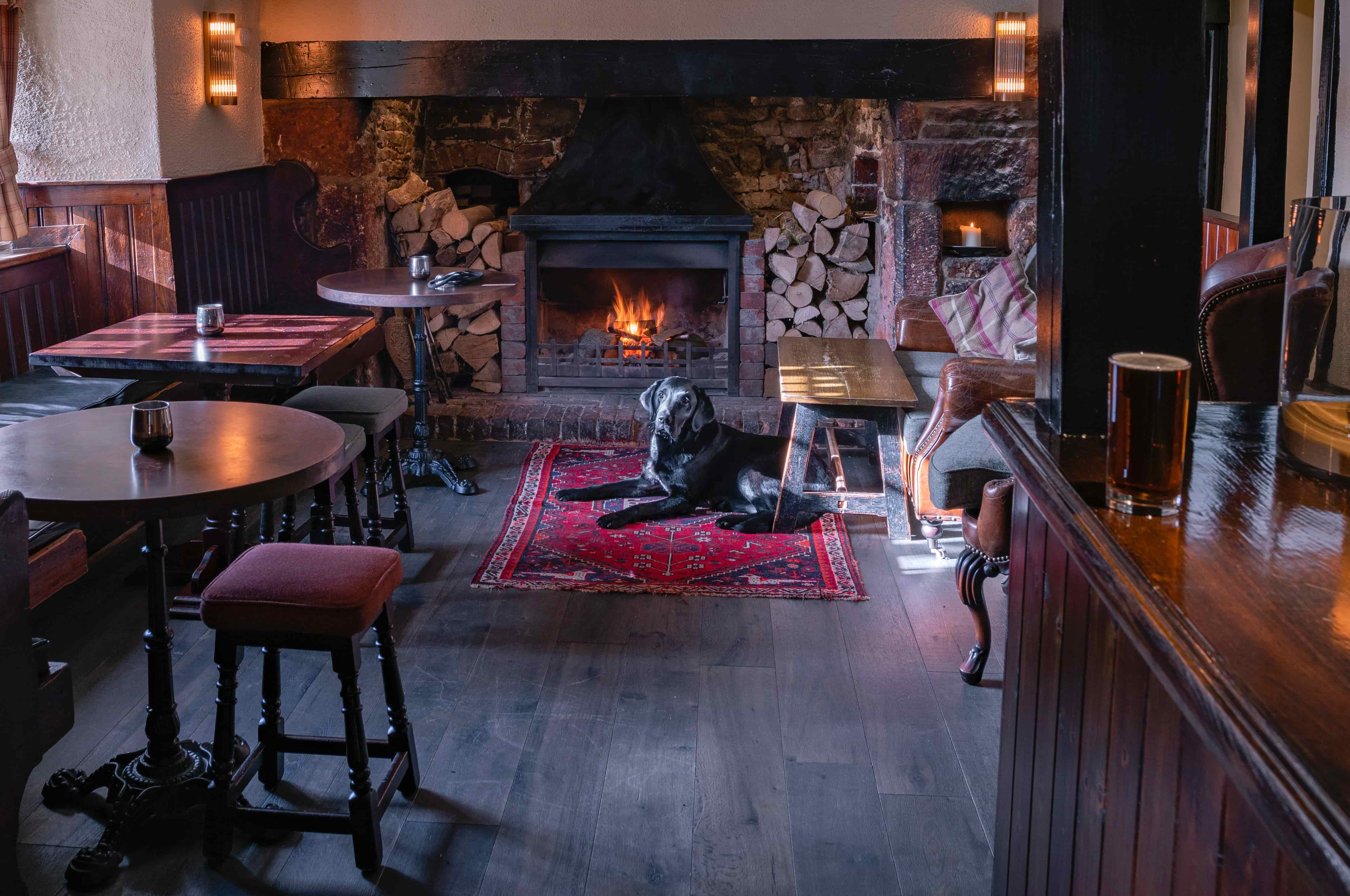 Dog Friendly Pubs In Manchester