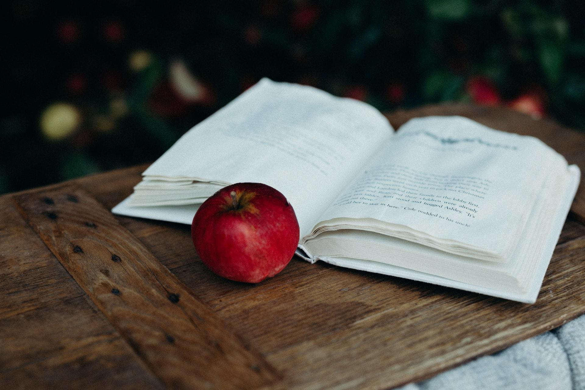 8 Poignant Books Like The Virgin Suicides