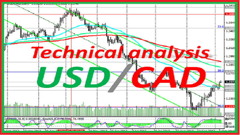 USD/CAD: technical analysis and trading recommendations_05/07/2021