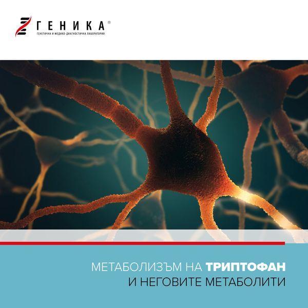 Метаболизъм на триптофан и неговите метаболити-image-preview