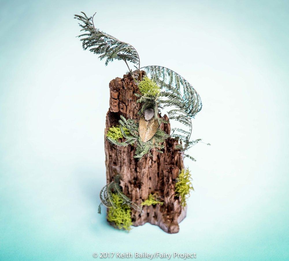 The Fairy Project - Good News Stump