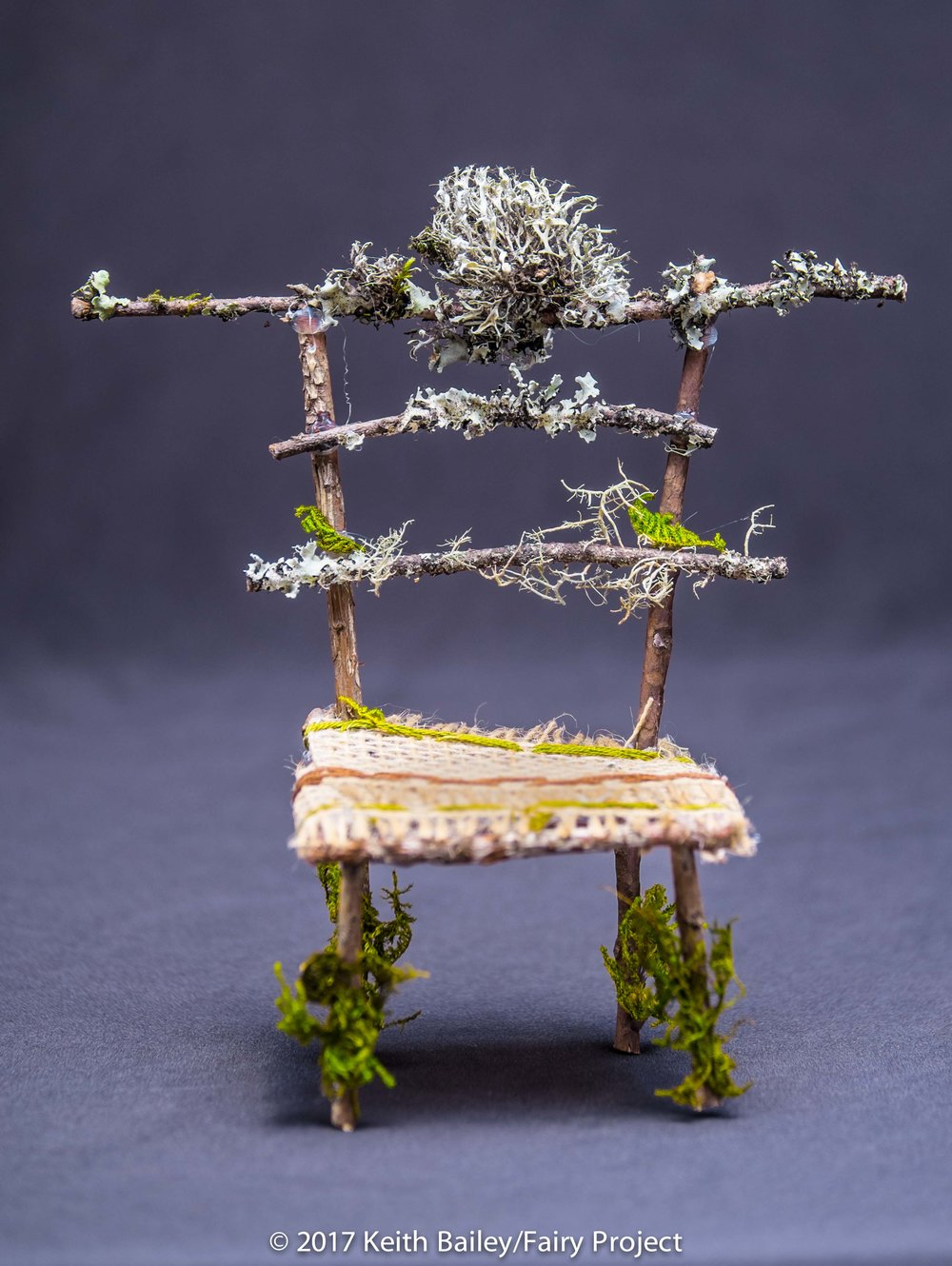 The Fairy Project - Throne Chair